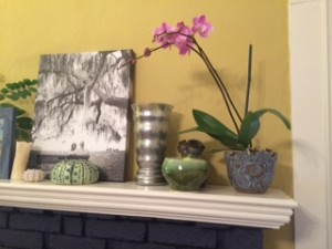 orchid on mantle