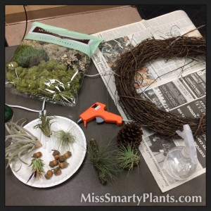How to Make a Airplant Wreath