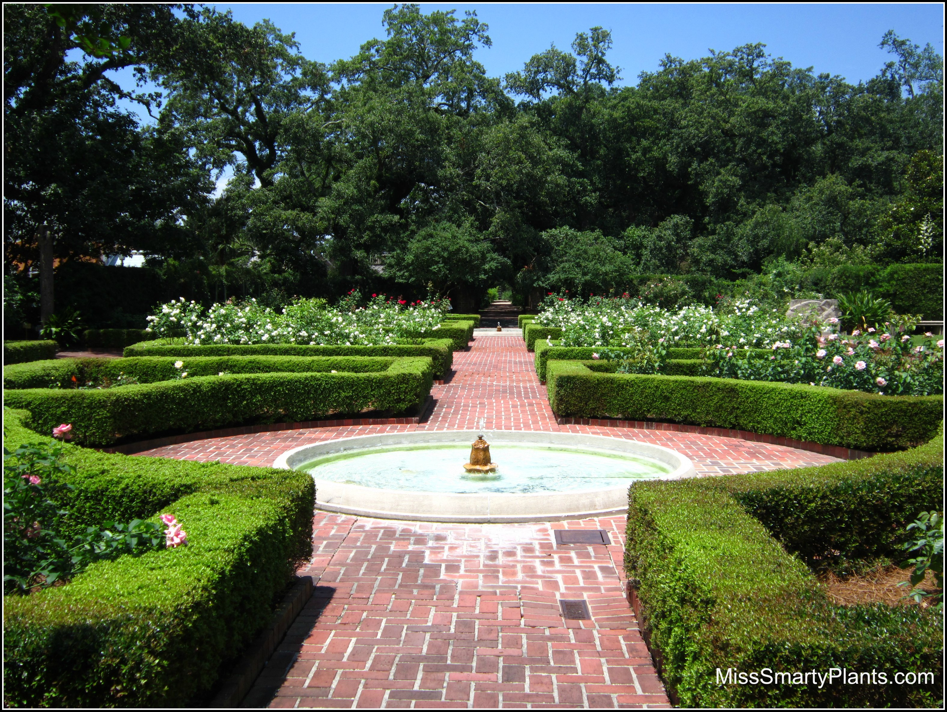 Visiting New Orleans Botanical Garden