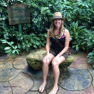 Visiting the Sunken Gardens, St. Petersburg, Florida