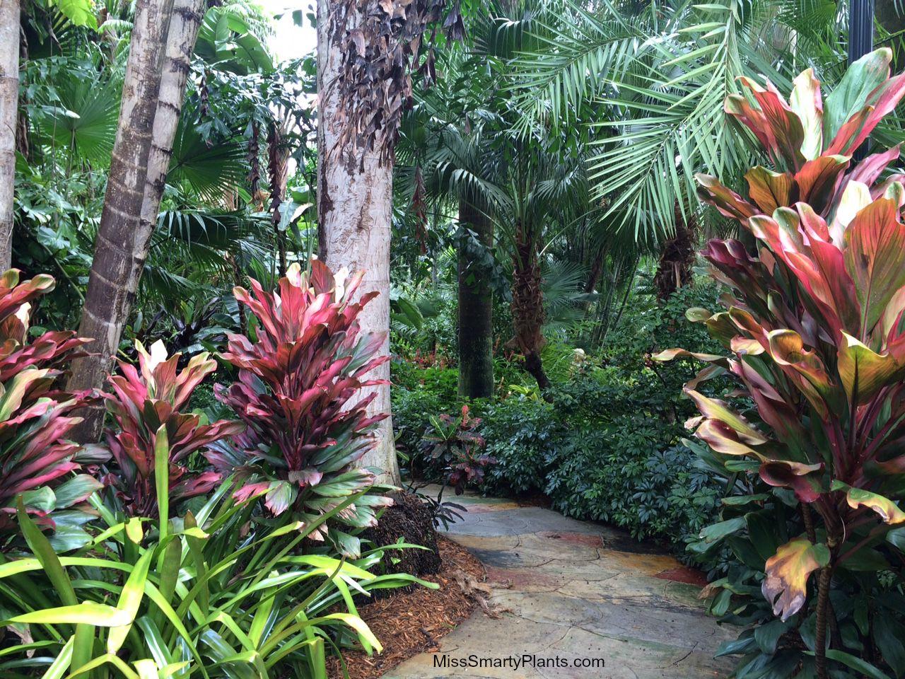 Visiting The Sunken Gardens St Petersburg Florida
