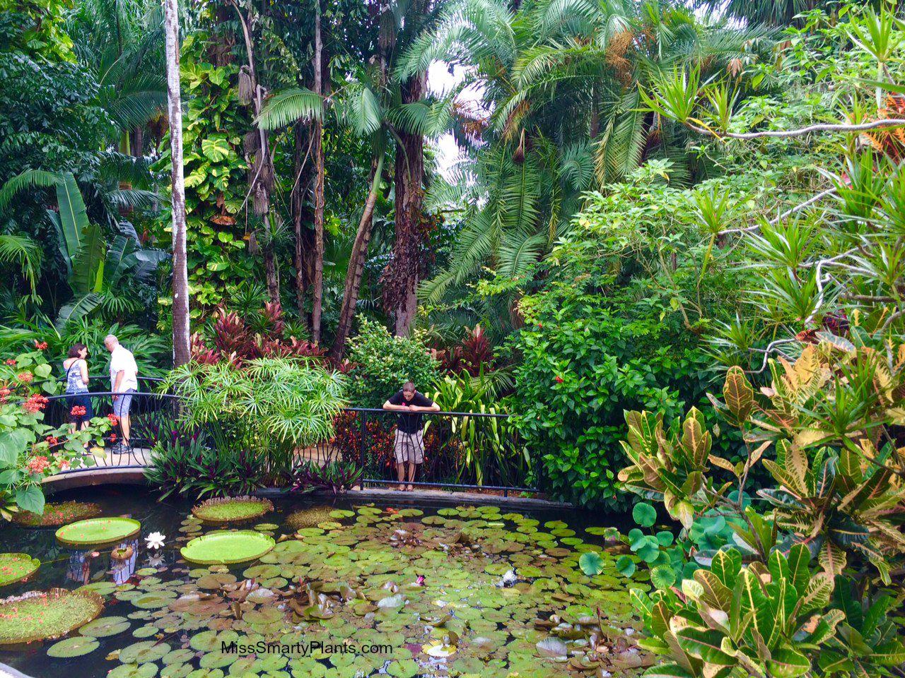 Visiting The Sunken Gardens St Petersburg