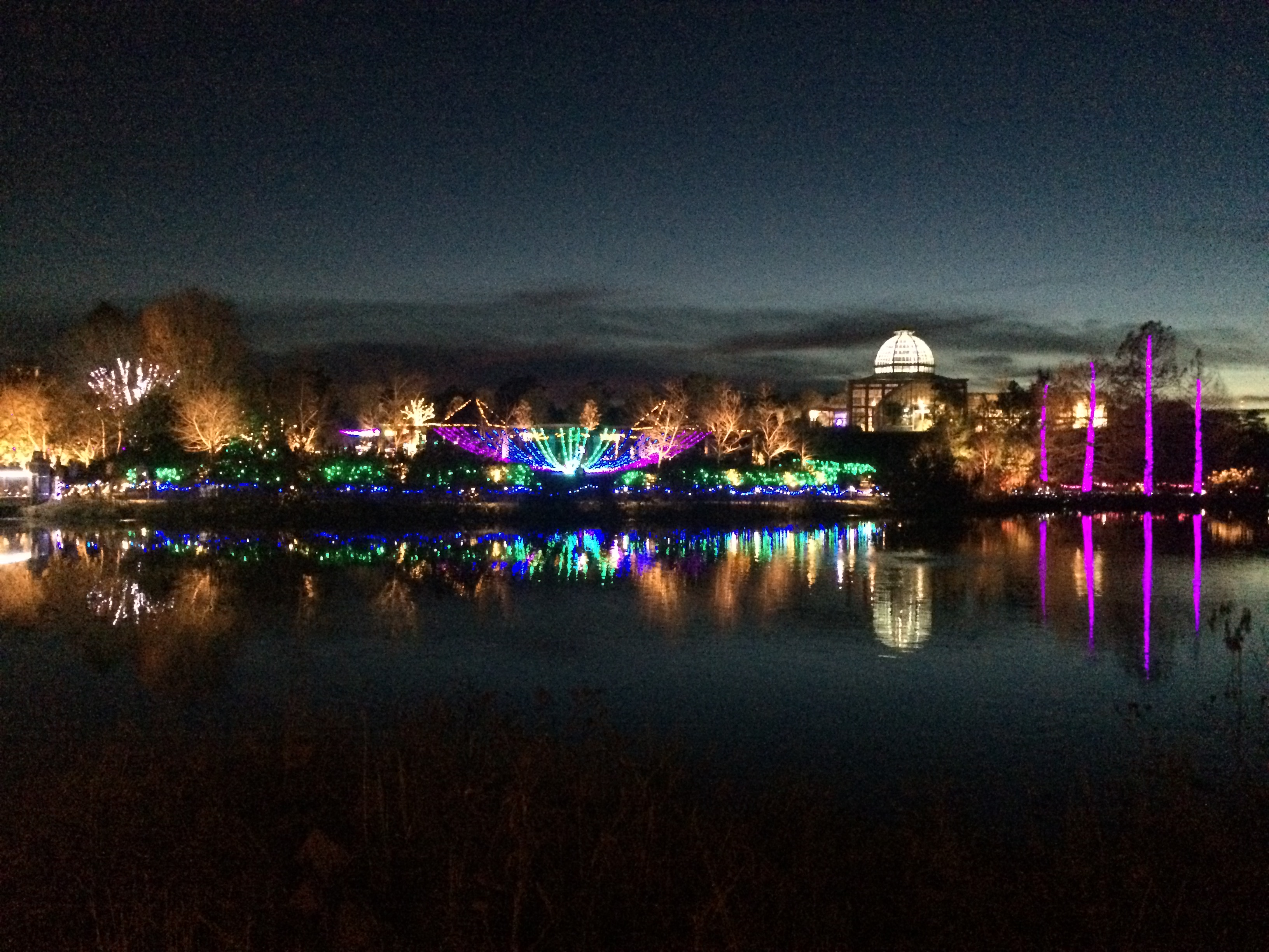 Holiday Lights at Lewis Ginter Botanical Gardens - Miss Smarty Plants
