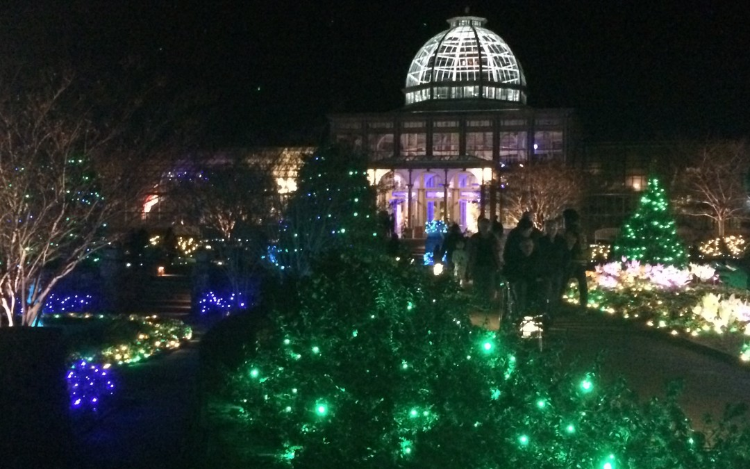 Holiday lights at lewis ginter botanical gardens miss for Botanical gardens christmas lights