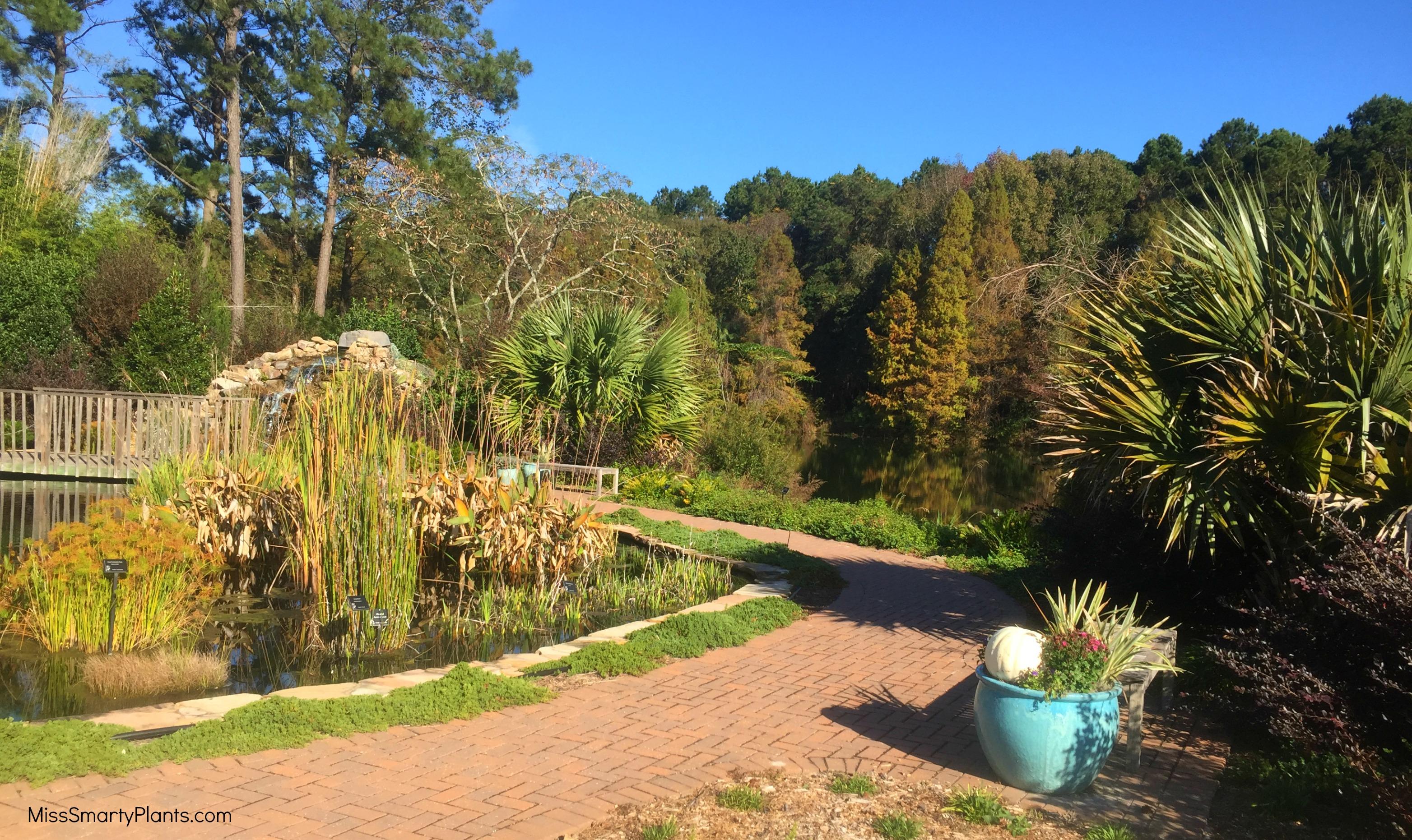 Visiting Coastal Georgia Botanical Gardens