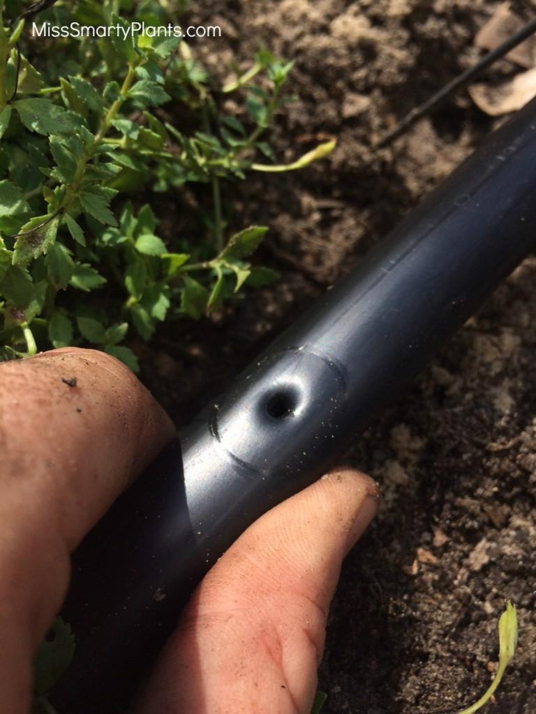 Micro irrigation installation