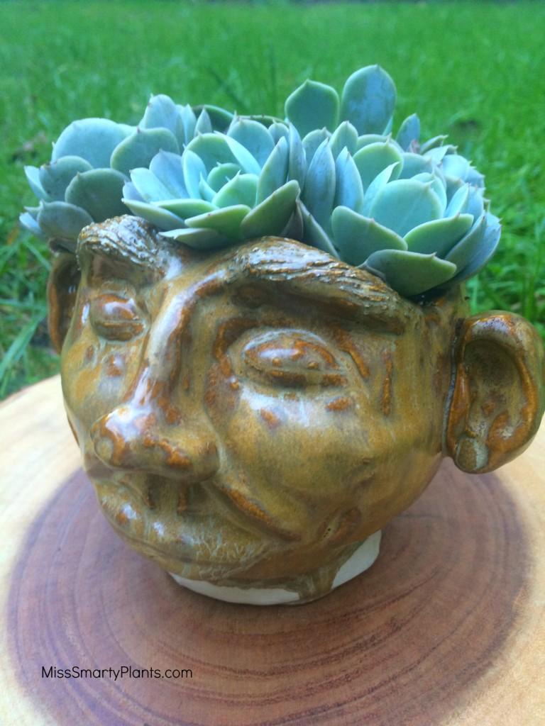 pot head ceramic pot face