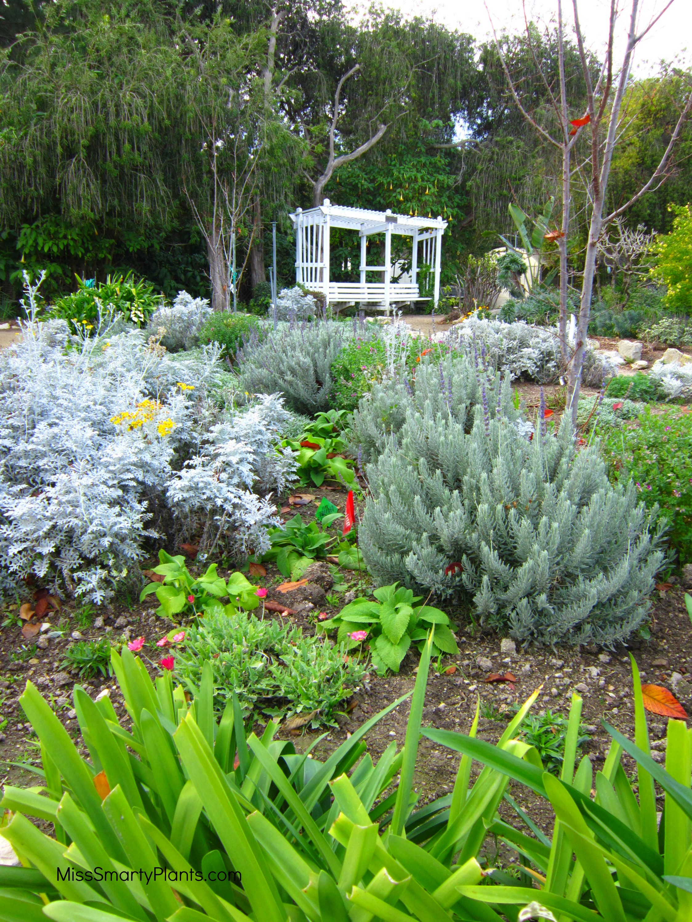 South Coast Botanic Garden
