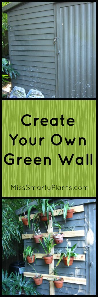 orchid green wall construction