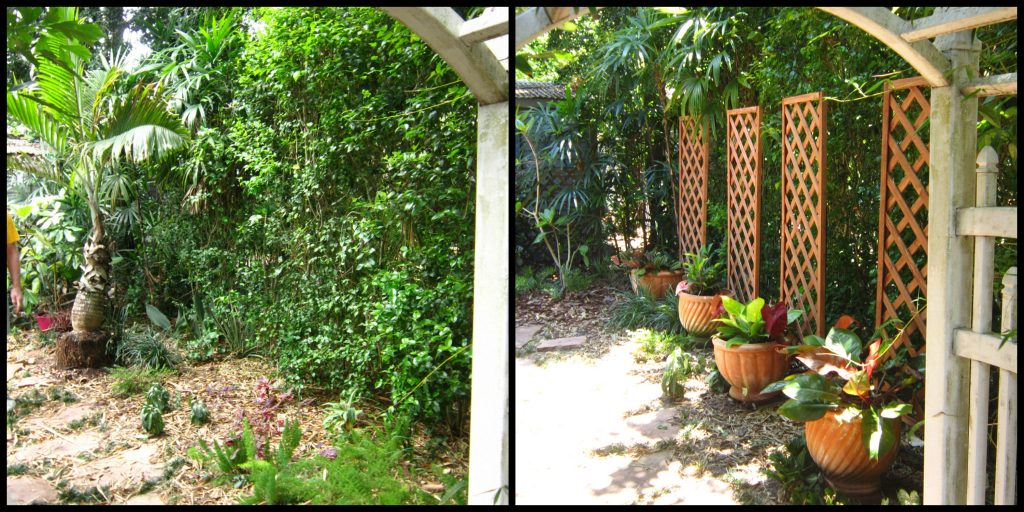 before and after garden project