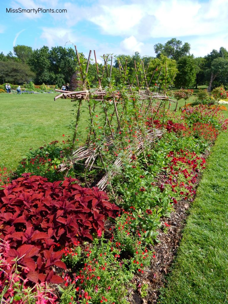 Red theme garden at Lyndale Park Gardens