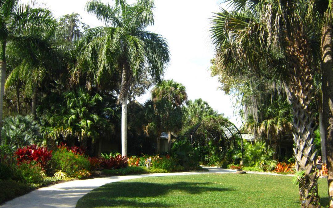 Visiting McKee Botanical Gardens