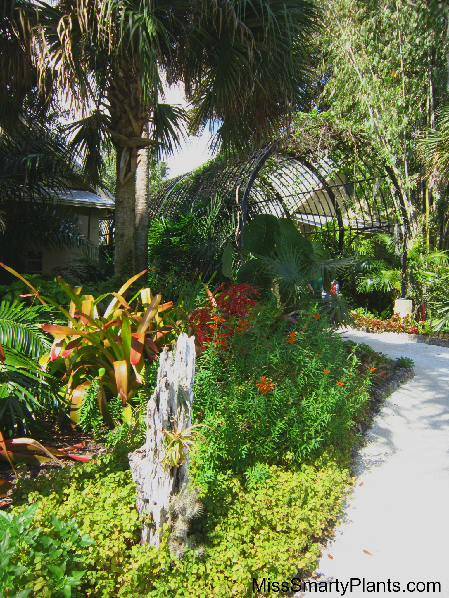 Visiting McKee Botanical Gardens In Vero Beach