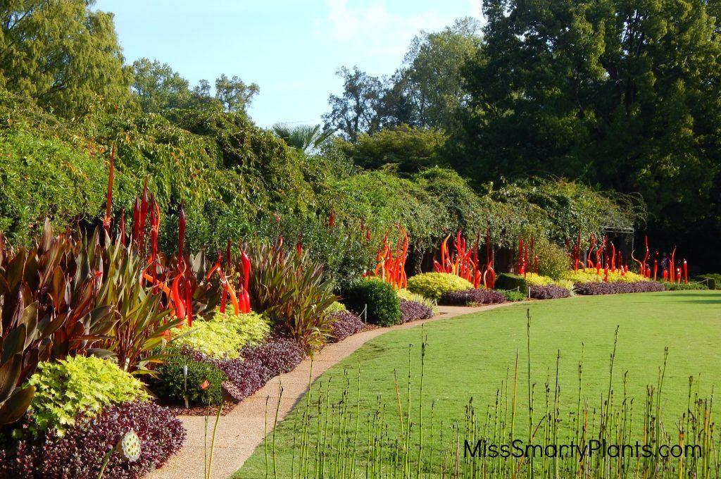 Chihuly at Atlanta Botanical Garden