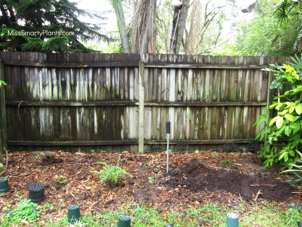 DIY trellis project