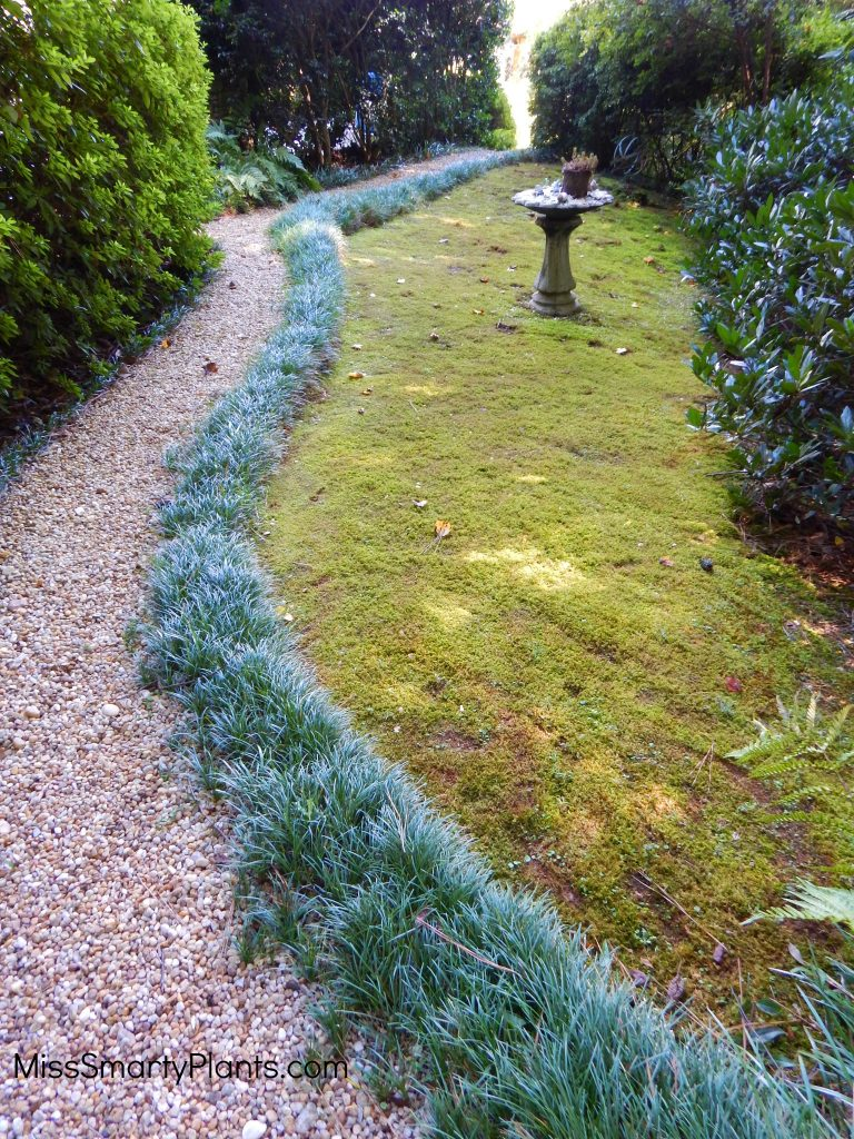 pea gravel garden path