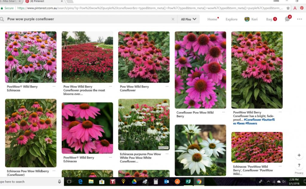 Pinterest for easy garden design tools