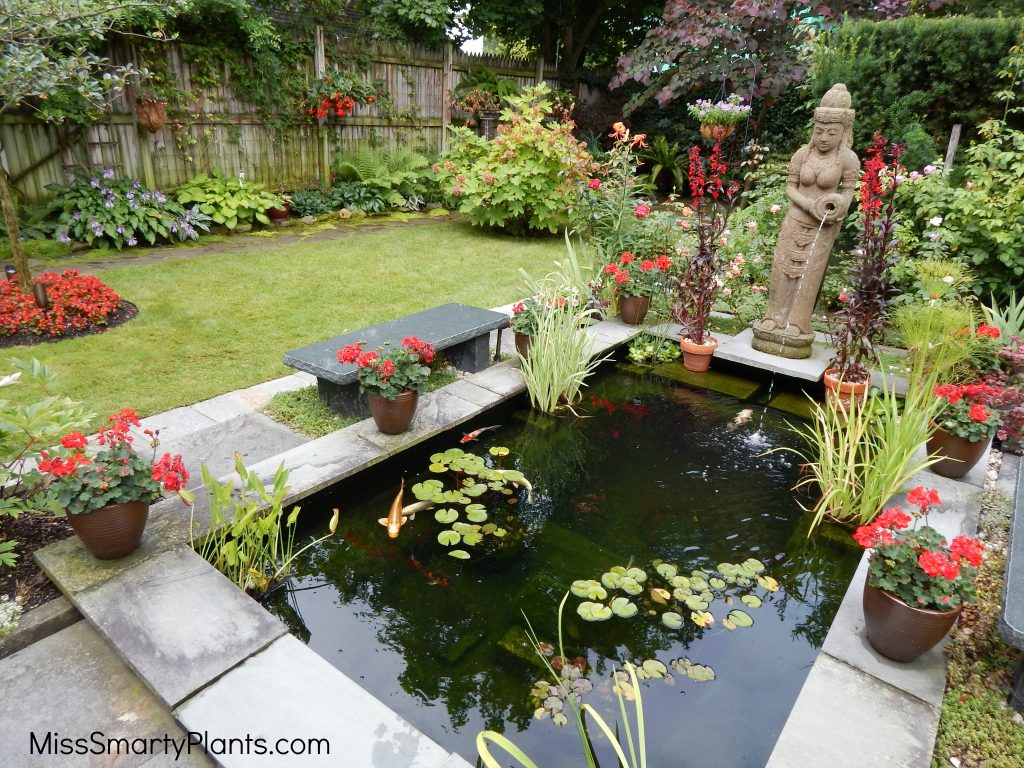 Unique water features
