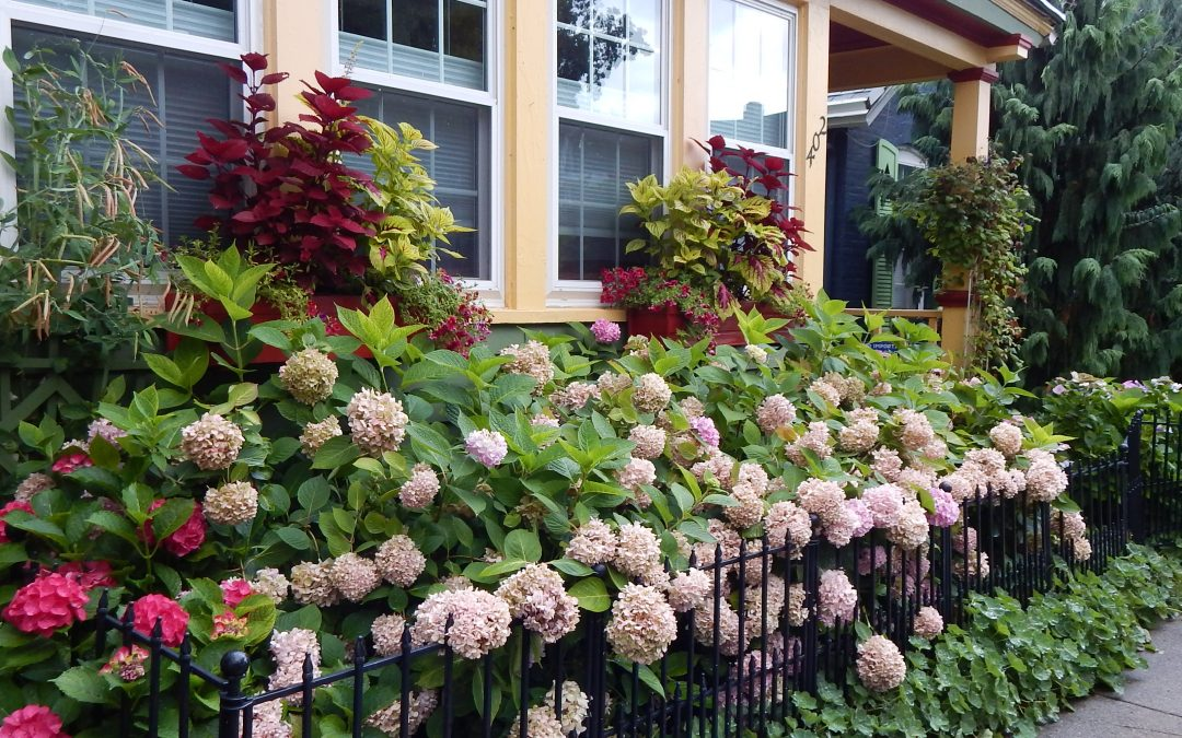 Tips for Using Your Garden to Help Sell Your Home