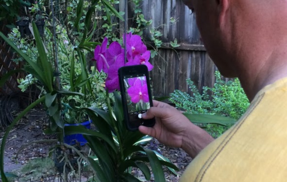 5 Apps To Help You Improve Your Garden