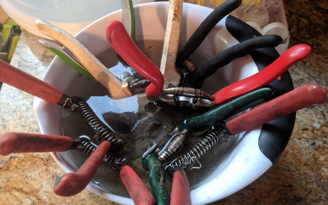 Treating Your Gardening Tools Like Your Best Friends