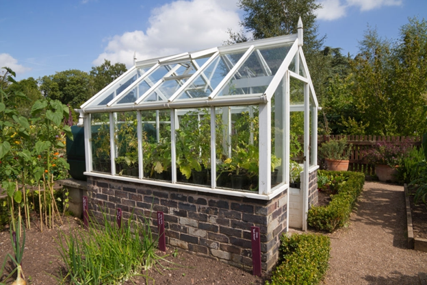 DIY Building Your Very Own Beautiful and Well-Protected Greenhouse in the Garden