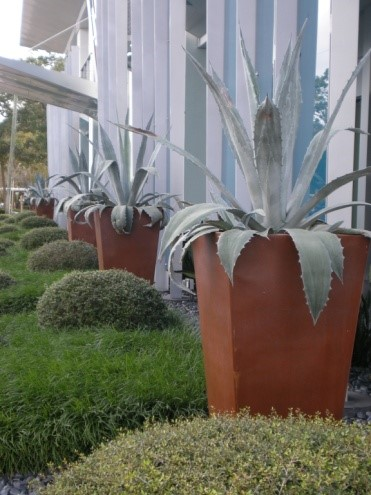 Containerscaping