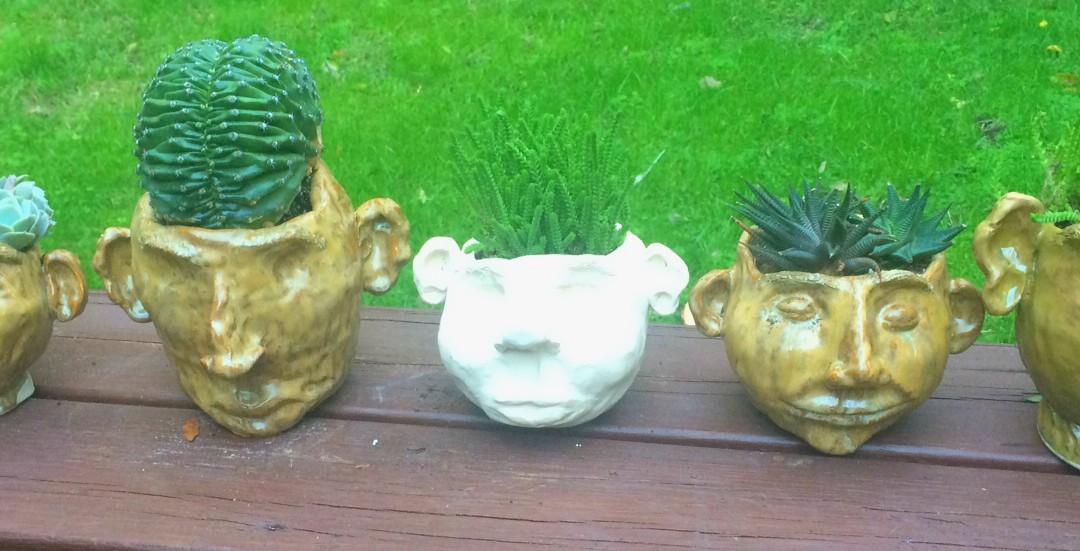 Brain Plants and Pot Heads…