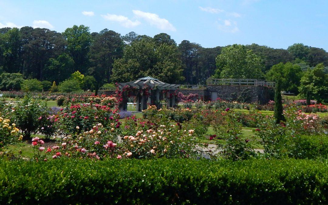 A Quick Visit to Norfolk Botanical Garden
