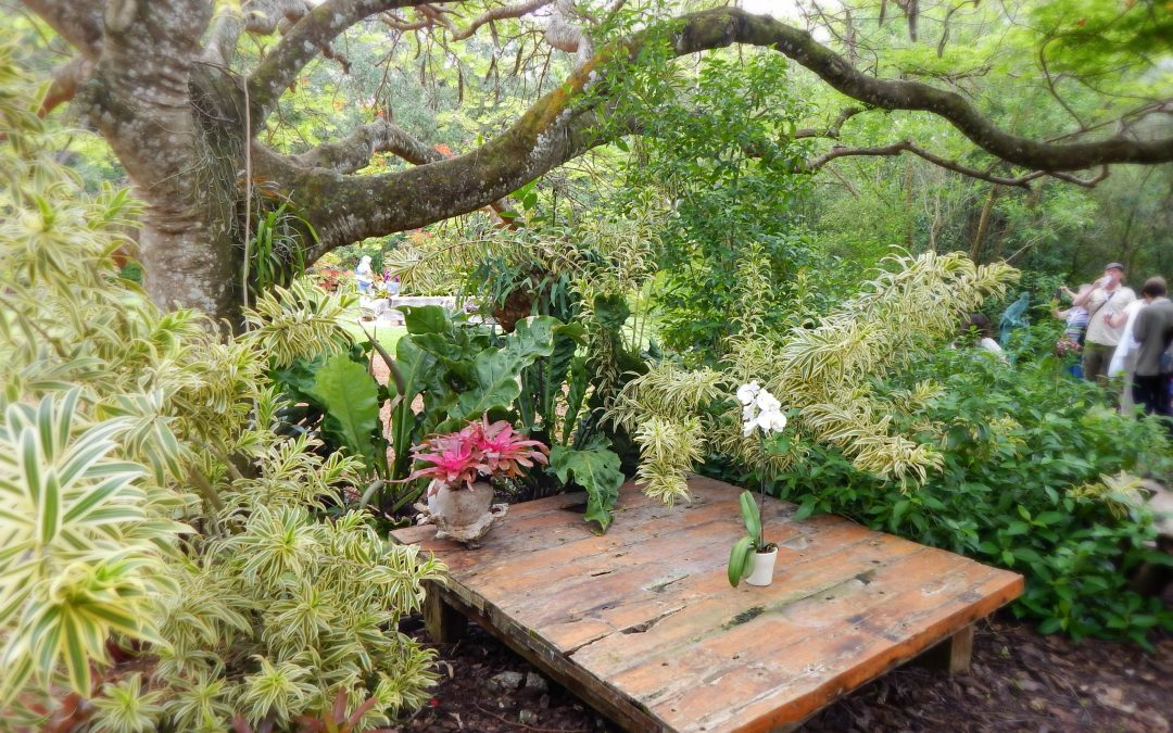 4 Aspects To Prepare Your Garden And Enjoy It This Spring