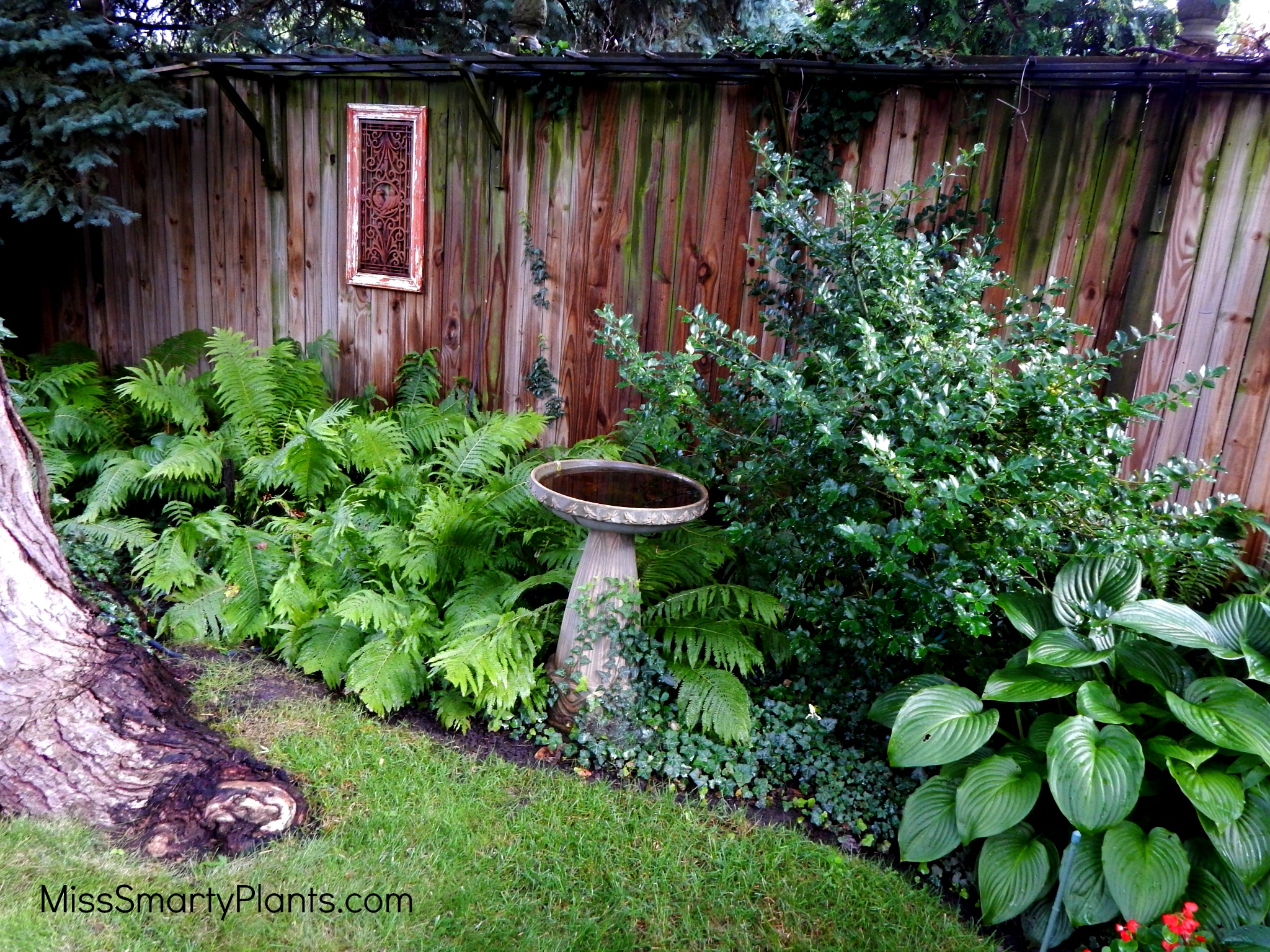 Choosing The Perfect Water Feature For Your Garden Miss