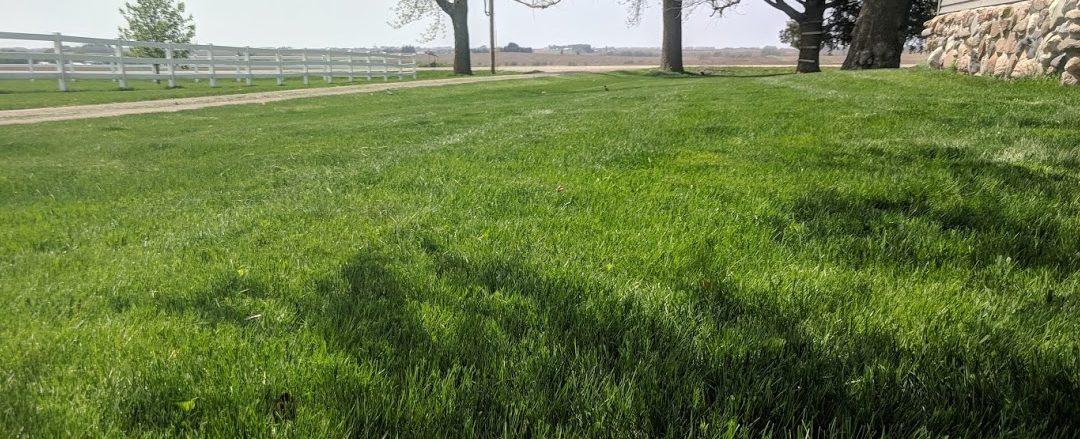 3 Ways To Make Much Easier Work Of Your Lawn