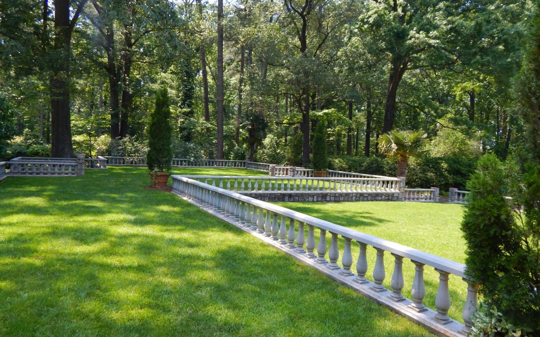 How to Help Your Lawn Look Its Best This Summer