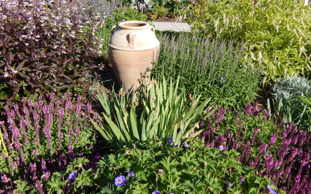 Top Tips For A Perfect Lawn